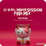 Dj Sveta - Winter Session 2010 - Pink mix