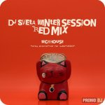 Dj Sveta - Winter Session 2010 - Red mix